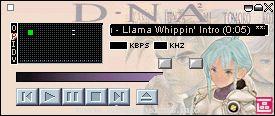 DNA2Amp