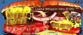 Deli Llama Amp