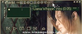 Final Fantasy Amp