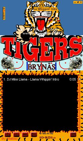 Kopia av Tigers