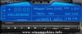 Netscamp 10