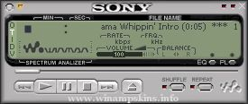Sony V65b