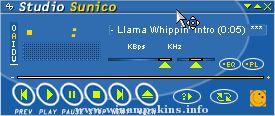 The Tony Hawk Amp