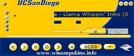 UCSD Amp
