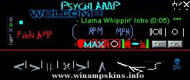 Psychi Amp by WD