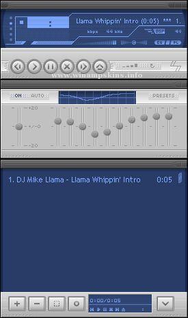 ZDL AMP