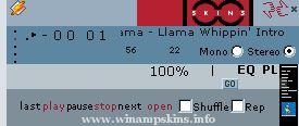 db 1001winampskins  v1 1
