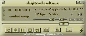 digitool culture